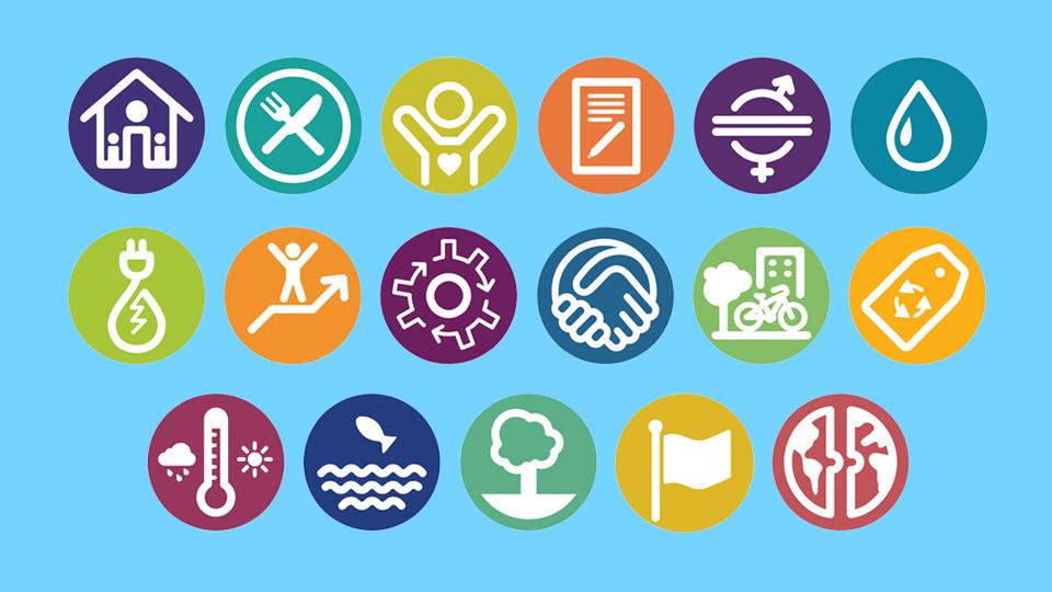 Incorporación de los Objetivos de Desarrollo Sustentables (ODS) en las asignaturas de pregrado UdeC